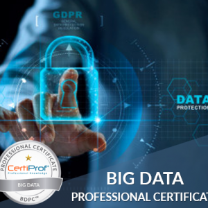 Big Data Professional